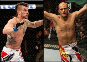 Thatch (left) and Bahadurzada (right)