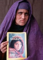 sharbatgula_latest